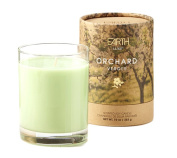 300ml Earth Luxe Scented Candle, Orchard