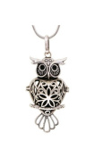Wisdom - Aromatherapy Diffuser Necklace - Silver