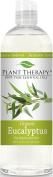 Eucalyptus Globulus ORGANIC Hydrosol 470ml (Flower Water) Bi-Product of Essential Oils