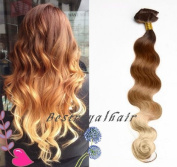 BestRoyalHair 18 Clips Brown to Blond Three Colours Ombre Hair Extension - 100% Indian Remy Human Hair RHS240