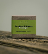 "Sallyeander "" Tea Tree & Spruce "" - Shampoo Bar - 100%Organic Made in USA"