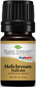 Plant Therapy Essential Oils, 100% Pure Helichrysum Italicum Essential Oil, Undiluted