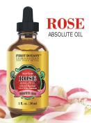 100% Pure Rose Essential Oil 30ml - Ultra Premium Undiluted Rose Oil / Rose Absolute Oil