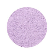 Anna Sui Loose Face Powder N Refill - Colour - Purple Lucent - 200