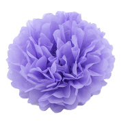 10 Pcs 25cm/10inch Tissue Paper Pom Poms Home Party Wedding Xmas Decoration Paper Flower Ball Hanging Flower Ball