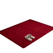 Dingang Super Comfortable Anti-slip Area Rugs/Floor Mat/Cover Carpets with Memory Foam for Living room/bedroom/Nursery/Teens/Home Decorate