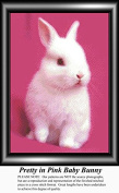 Pretty in Pink Baby Bunny, Animal Counted Cross Stitch Pattern