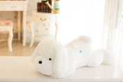 Lovely LED Light Up Pillow Sleeping Dog Shape Cushion Pets Puppy Plush Soft Toys Dolls for Kids Gifts Christmas Decorations