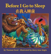 Before I Go to Sleep / Traditional Chinese Edition [Large Print]