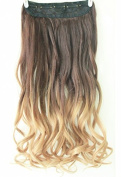 3/4 Full Head Clip in Hair Extensions Ombre One Piece 2 Tones Wavy