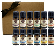 5ml Gift Set Essential Oil Blends