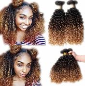 ATOZHair 7A Omber 100% Brazilian Virgin Hair 6 Bundles Unprocessed Extensions Curly Wave #1B #4 #27 Human Hair 50G/Bundle 300Gram in total