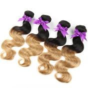 Hotbaby Hair Wet And Wavy Virgin Brazilian Hair Body Wave Hair 4 Bundles Ombre Human Hair #1B/27 #1B/99J Brazilian Bundles