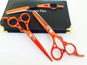 Barber Shears Salon Scissors Hair Cutting Hairdresser Extra Sharp J2 17cm Set