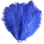 Natural Ostrich Feathers Plume for Wedding Centrepieces Home Decoration 10-12 inchs (25-30cm) 10Pcs