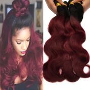 Black Rose Hair Two Tone Ombre Hair Extensions Weaves 7A Peruvian Virgin Hair Body Wave Human Hair 4 Bundles 1B/99J Black+Burgundy 100g*4pcs
