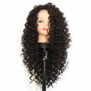 V'Nice Synthetic Kinky Curly Lace Front Wig for Black Women Heat Resistant Synthetic African American Wigs Natural Black Colour