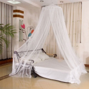 Explosion Models Moustiquaire Dome Lace Hanging Mosquito Nets Classical Palace Mosquito Nets