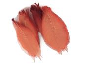 Red Orange Skeleton Small Leaves 7.6cm Natural Colour Flower Making Natural Rubber Leaves