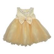 Baby Girls Champagne Bejewelled Neckline Bow Accent Flower Girl Dress 6-24M