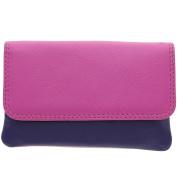 Visconti Leather Rainbow Collection TAHITI Purse RB99