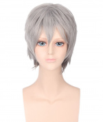 Men's Silver Grey Animotion Fancy Dress Short Cosplay Wigs with Cap