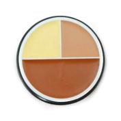 flawless concealer - M.N 3 colours flawless concealer cream foundation makeup face£¨04#£©