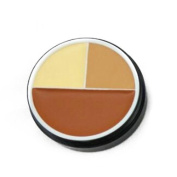 flawless concealer - M.N 3 colours flawless concealer cream foundation makeup face£¨01#£©