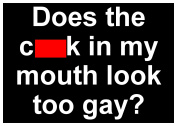 Sticker Decal Fun Funny LGBT Gay Male Man Men Camp Humor Humour Sex Sexy Joke Does the Cock in my Mouth Look Too Gay