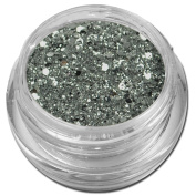 RM Beauty Nails Glamour Glitter Silver Glitter Powder for Nail Art in many different Colours to Choose From