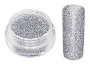 Nail Art Glitter Powder Silver