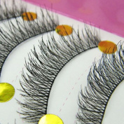 1Gemini® Professional 10 Pairs Long Cross False Eyelashes Makeup Natural Thick Black Fake Lashes