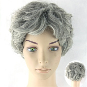 DAYISS Mom's Wig Women Daily Wear Natural Curly Wavy Short Hair Full Wig Grey
