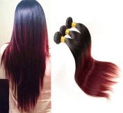 36cm ,41cm ,46cm Two Tone Ombre 100% Human Virgin Remy Hair Extension Weave Coloured Silky Natural Straight Black to Red Wine 1B/#99J hair Weft 3 bundles