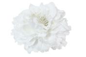 Skelapparel Bridal White Flower Hair Clip / Pin