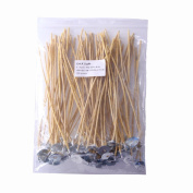 EricX Light Organic Hemp Candle Wicks, 100 Piece Low Smoke 20cm Pre-Waxed by 100% Natural Beeswax & Tabbed, For Candle Making