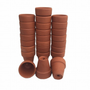 25 - Ultra Mini 3.8cm x 4.8cm Clay Pots - Great for Plants and Crafts