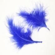 Hgshow 100Pcs Turkey plumage, Many Colour Options,Each about 13cm - 15cm in length