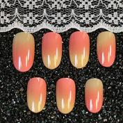 Blusher Colour Shading Design Round Head Fake Nails French Manicure Nail Tips-Orange