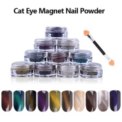 10 colours 1g/Box 3D Effect DIY UV Gel Poland Magic Mirror Cat Eye Magnet Dust Shimmer Nail Art Powder + Magnet Pen