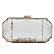 Flada Women's Clear Clutch Evening Handbag Purse Transparent Acrylic Crossbody Bag