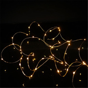 Tuscom 2M 20LED Micro Rice Wire Copper Fairy String Lights Party