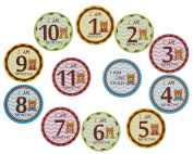 Baby Monthly Stickers 1-12 Months for Baby Boy or Baby Girl, 10cm x 10cm