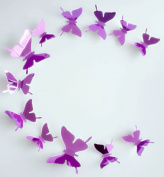 YCT DIY 3d Butterfly Wall Decor,Acrylic Butterfly Series.