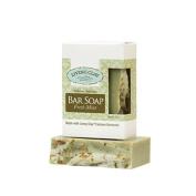 Living Clay Bar Soap, Fresh Mint, 120ml