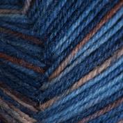 Regia 4 Ply Sock Yarn 100G - 5171
