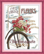 CaptainCrafts New Cross Stitch Kits Patterns Embroidery Kit - Flowers And Bicycle