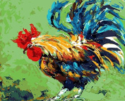 Arts Language Wooden Framed 41cm x 50cm Paint by Numbers Diy Painting -Rooster