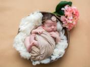 Sunmig Newborn Baby Basket Stuffer Photo Props Merino Wool Fluff Basket Filler Photography Prop