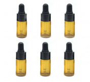 12Pcs 3ml Essential Oil Bottle Perfume Dropper Bottle Essence Bottles DUTE-L Sample Bottle Holder Container Great for Travel Packing